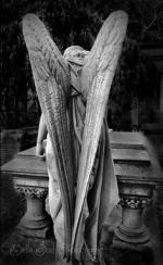 Foto de Black angel